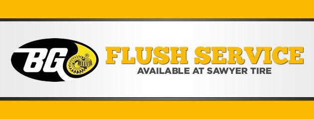 BG Flush Service