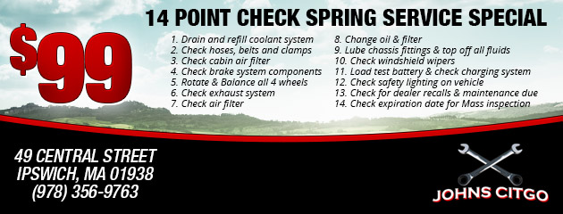 14 Point Check Spring Service