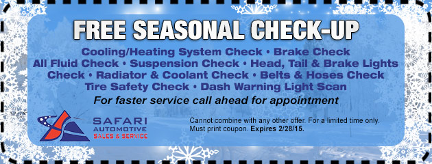 Free Seasonal Check Up