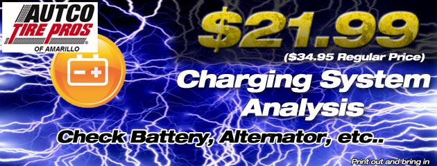 $21.99 Charging System Analysis