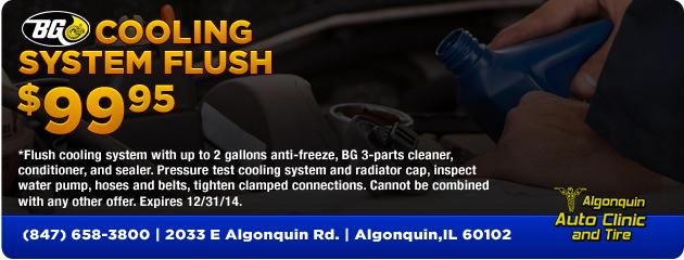 BG Cooling System Flush $99.95